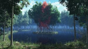 カーメルの森.jpg
