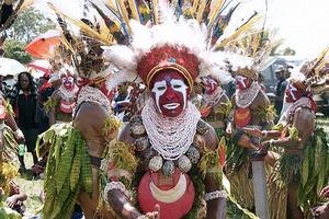 ニューギニアパラカ.jpg