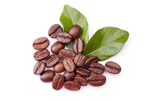コーヒー豆の地域による味の違い!国別のコーヒーの味わいや特徴を比較サムネイル