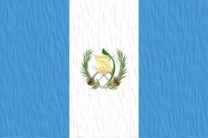 グアテマラ SHB ジェヌイン アンティグア ジャスミン